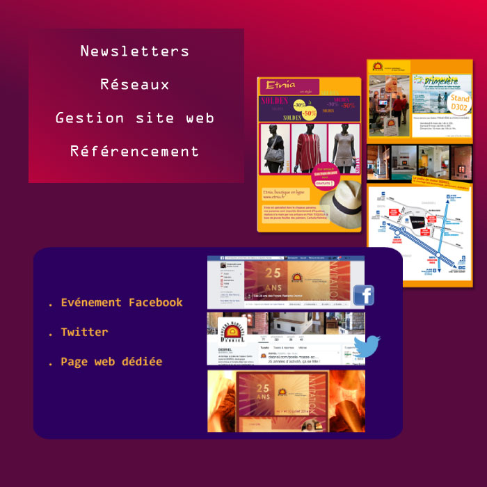 newsletter-reseaux-referencement-internet